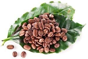 Coffee beans. Closeup snapshot.