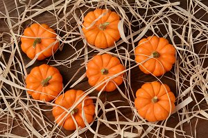 Mini Pumpkins and Straw