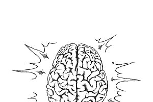 Human brain. Creativity. Sketch.