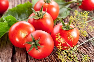 Tomatoes, cooked with herbs