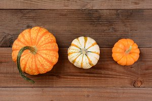 Different Decorative Pumpkins