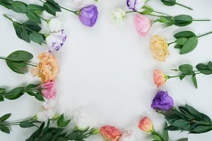 Pink, white and violet flowers