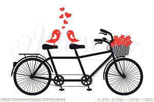 Tandem bicycle with love birds