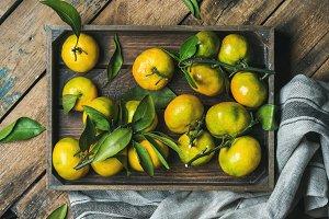 Fresh Mediterranean tangerines