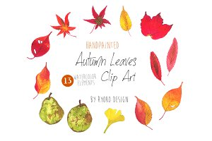 Autumn Leaves Watercolor Clip art