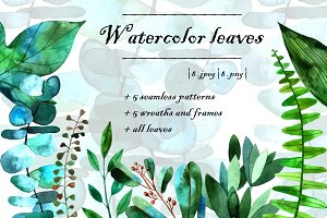 Watercolor leaves set.