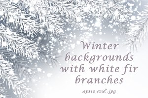Backgrounds with white fir branches