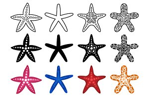 Starfish icon set