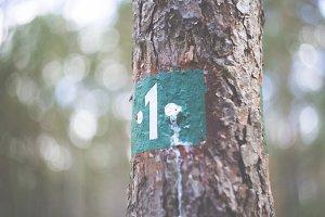 hiking sign path marking