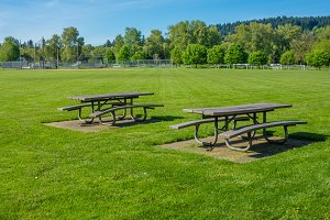 Picnic tables in public park