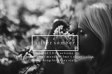 Silver Somber - Photoshop Actions