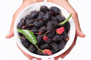 Crockery with mulberries in woman hands. Isolated on a white.