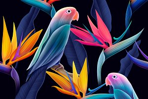 Seamless patterns with cute parrots