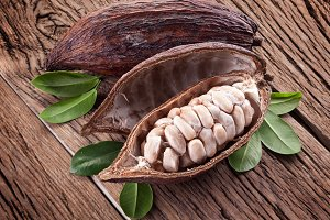 Cocoa pod on a dark wooden table.