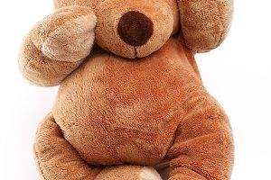Ill teddy bear with plaster.