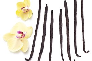 Vanilla sticks with a flower on a white background.