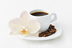 Coffee cup & orchid
