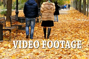 Video footage.Autumn leaves