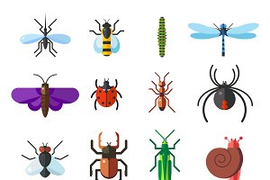 Insect icon flat set vector