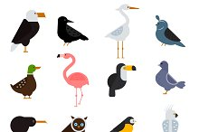 Birds vector set