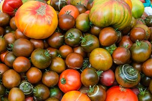 Tomatoes on display at a market