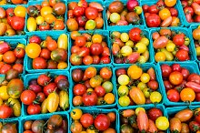 Tomatoes in boxes at the market
