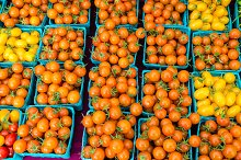Orange tomatoes at the market