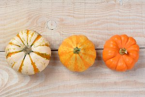 Overhead Decorative Pumpkins