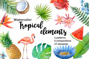Watercolor tropical elements.