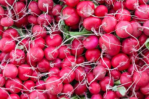 Fresh red radishes on display