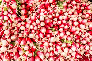 Fresh red and white radishes