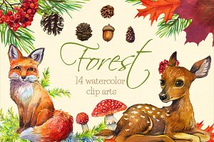 Forest watercolor clip arts