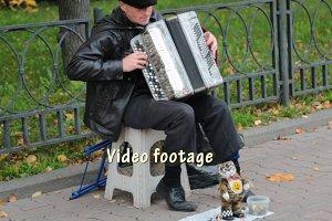 Yard play a musician -accordion