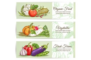 Vegetarian vegetables banners