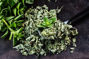 Fresh and dried oregano on black background