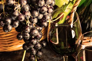 Glass of red wine and grapes with leaves