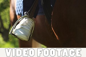 Foot in the stirrup on the horse