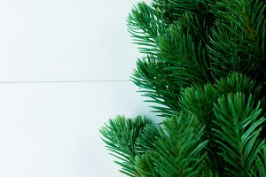 Part of spruce Christmas tree on white wood background