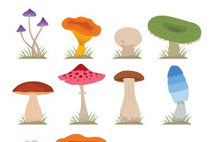 Mushrooms vector set