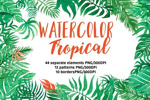 Watercolor Tropical