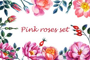 Pink rosehip set