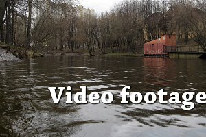 Video/timelapse cold autemn pond and