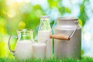 Fresh organic milk.