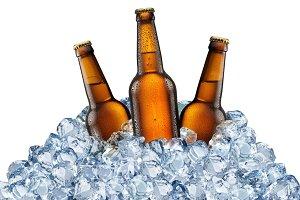 Three beer bottles in ice cubes.