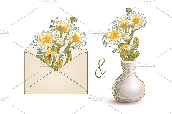 Chamomile. Envelope and vase - Illustrations