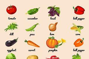 Big vector set of 20 vegetables