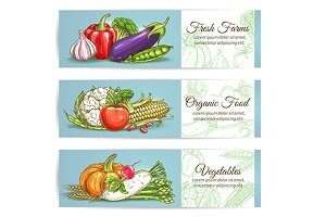 Vegetables banners. Sketch style