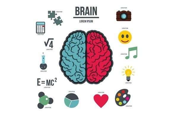 Human Brain Infographics Set