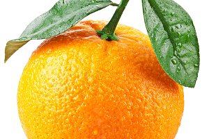 Orange isolated on a white background. Image with a maximum depth of field.