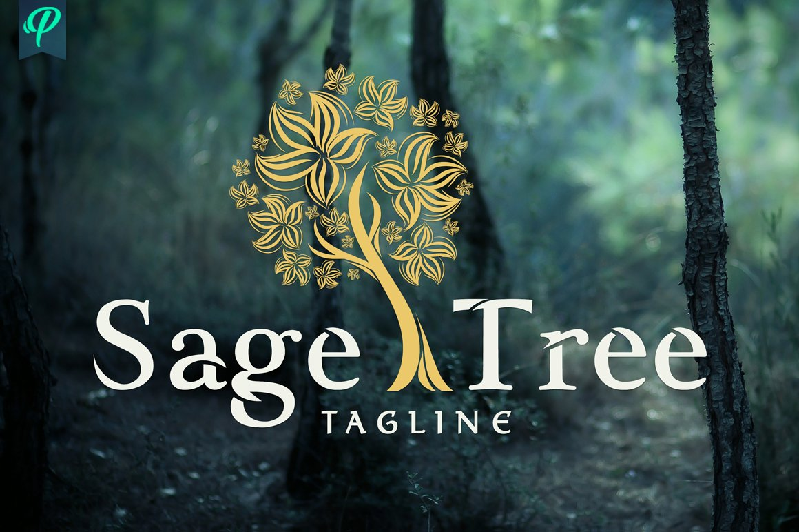 Sage Tree Logo Design Logo Templates Creative Market